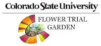 CSU Flower Trial Garden 2015